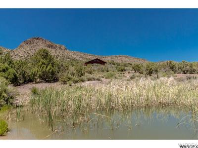 Kingman Single Family Home For Sale: 18723 E Knight Creek Road