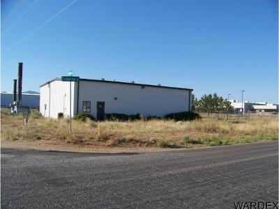 Kingman Commercial For Sale: 7045 N Commerce Dr