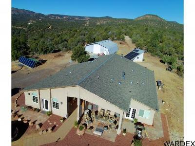 Kingman Single Family Home For Sale: 3242 N. Willows Ranch Rd,