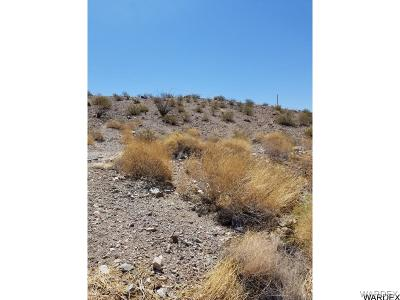 Lake Havasu City Residential Lots & Land For Sale: 3640 Kicking Horse Dr