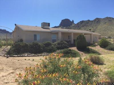 Dolan Springs Single Family Home For Sale: 16757 N Needle Dr