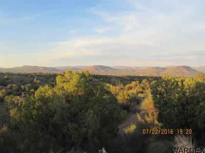 Kingman Residential Lots & Land For Sale: 5 Sandy Hill Trail