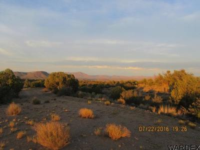 Kingman Residential Lots & Land For Sale: 0000 Sandy Hill