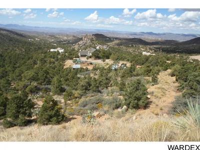 Kingman Residential Lots & Land For Sale: 2835 E Stallion Drive