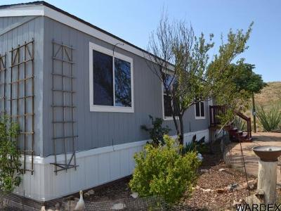 Mohave County Manufactured Home For Sale: 7648 N Avenida Del Burro