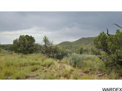 Kingman AZ Residential Lots & Land For Sale: $34,900