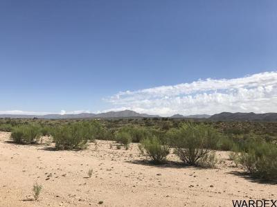 Kingman AZ Residential Lots & Land For Sale: $10,000