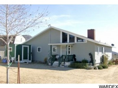 Chloride, Dolan Springs Single Family Home For Sale: 4848 W Rainbow Ave