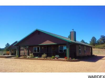 Kingman Single Family Home For Sale: 2960 N N Willows Ranch Rd