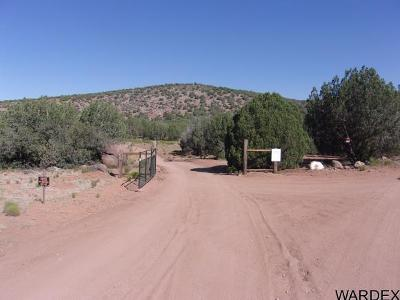 Mohave County Manufactured Home For Sale: 21095 NW McKenzie Dr