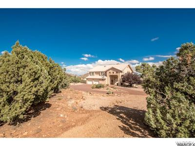 Kingman Single Family Home For Sale: 1617 W Mote Dr