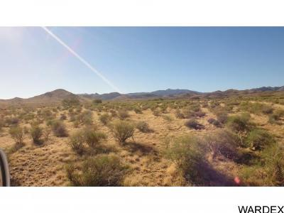 Kingman Residential Lots & Land For Sale: 9733 N Mountain Mesa Trail