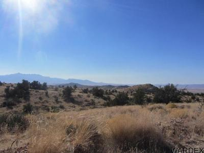 Kingman AZ Residential Lots & Land For Sale: $32,900