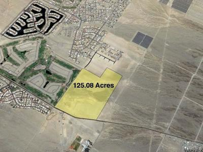 Fort Mohave Residential Lots & Land For Sale: 125.08 Acres - Boundary Cone