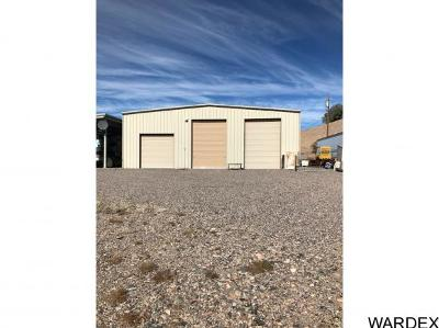 Lake Havasu City AZ Single Family Home For Sale: $300,000