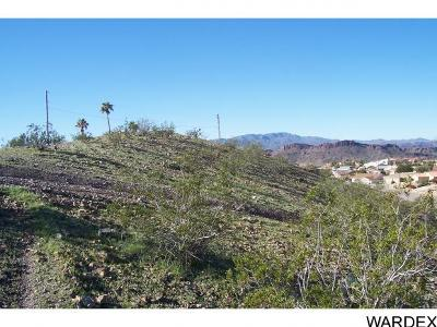 Lake Havasu City AZ Residential Lots & Land For Sale: $49,900