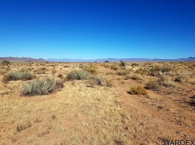 Kingman Residential Lots & Land For Sale: Lot 9 Alamosa Street