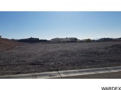 Havasu Foothills Estates Residential Lots & Land For Sale: 4021 Avienda Del Sol