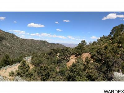 Kingman Residential Lots & Land For Sale: 6827 E. Silk Tassel Lane
