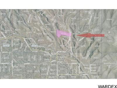 Kingman Residential Lots & Land For Sale: 625 N Friendship Pass