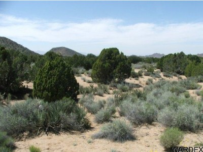 Mohave County Residential Lots & Land For Sale: Par 3287 Sun Valley Rd