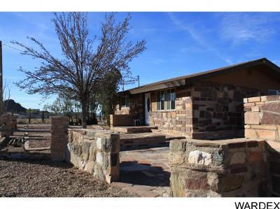 Golden Valley Single Family Home For Sale: 2487 W Oatman Hwy