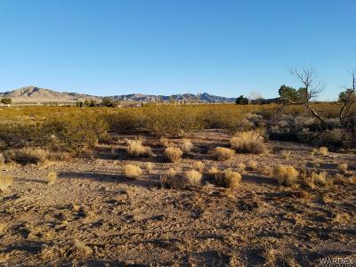 Kingman Residential Lots & Land For Sale: 8806 N Ironwood Dr