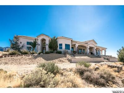 Kingman Single Family Home For Sale: 4080 E Lazy Y-U Drive