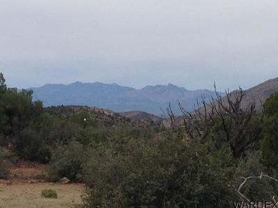 Kingman Residential Lots & Land For Sale: Lot 195 Mystic Canyon