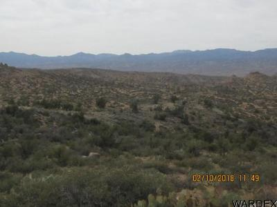 Kingman AZ Residential Lots & Land For Sale: $172,800