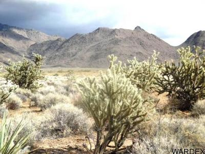 Kingman Residential Lots & Land For Sale: E Unk Street