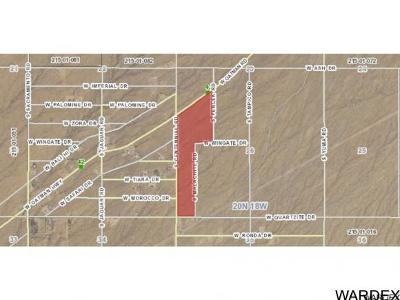 Golden Valley Residential Lots & Land For Sale: 0000 Oatman Highway