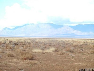 Kingman Residential Lots & Land For Sale: Mikes Blvd