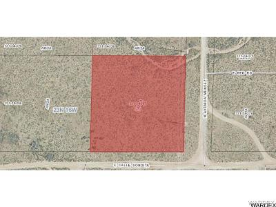 Residential Lots & Land For Sale: . Calley Sonoita