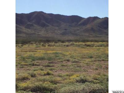 Kingman Residential Lots & Land For Sale: Velvet Rose