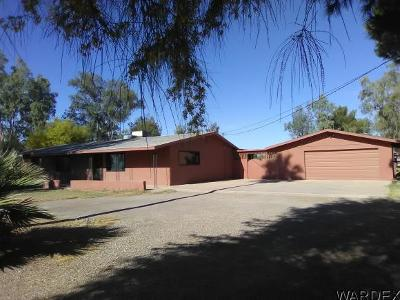 Mohave County Single Family Home For Sale: 8485 S Boundary Peak Rd