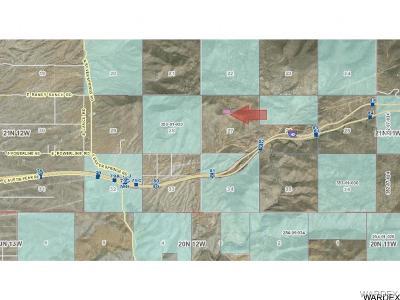 Kingman Residential Lots & Land For Sale: Unk Silver Springs Lot 420