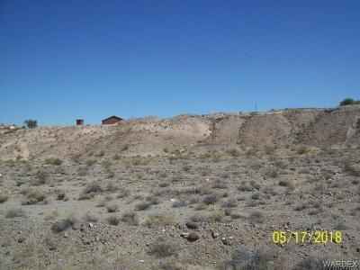 Bullhead City Residential Lots & Land For Sale: 1845 Newberry Dr