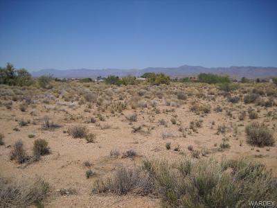 Kingman AZ Residential Lots & Land For Sale: $4,000