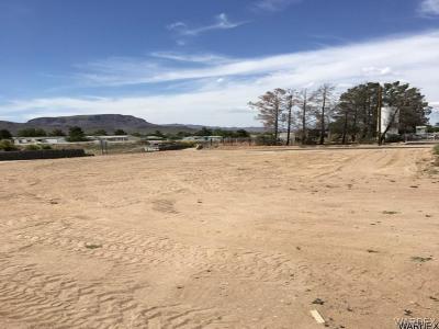 Kingman AZ Residential Lots & Land For Sale: $20,000
