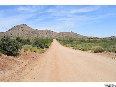 Kingman Residential Lots & Land For Sale: 10-C Painted Shadow Lane