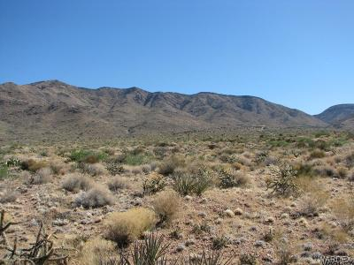 Kingman Residential Lots & Land For Sale: UNK Mikes Rd
