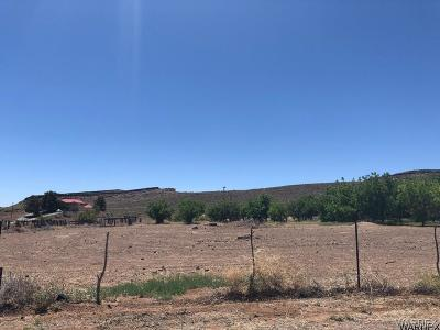 Kingman Residential Lots & Land For Sale: 410 Riata Valley Road
