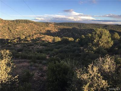 Kingman AZ Residential Lots & Land For Sale: $36,000