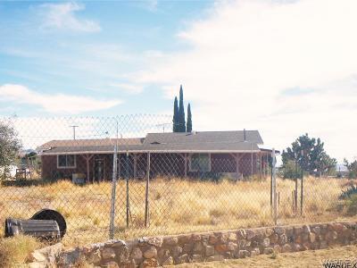 Dolan Springs Single Family Home For Sale: 16062 Latigo Circle N