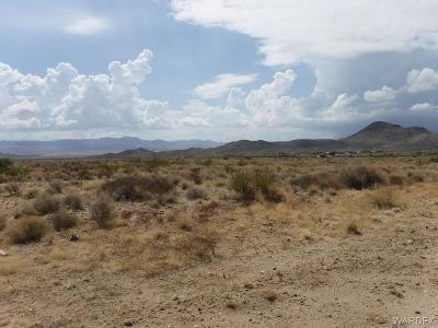Kingman AZ Residential Lots & Land For Sale: $43,500