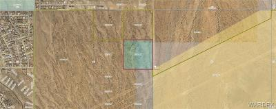 Kingman AZ Residential Lots & Land For Sale: $550,000
