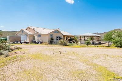 Kingman Single Family Home For Sale: 249 Red Wing Canyon Road