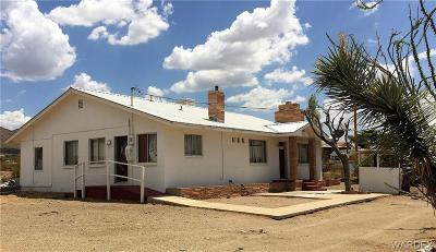 Dolan Springs Single Family Home For Sale: 15900 N Inglewood Road