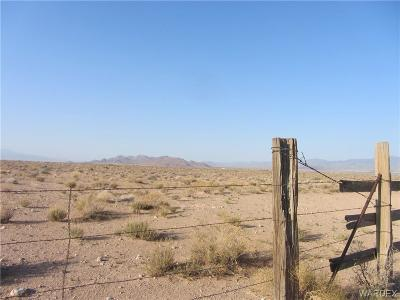 Kingman Residential Lots & Land For Sale: 0000 Kaibito Road